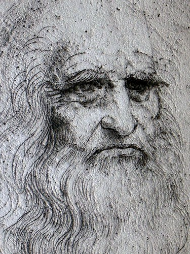 Leonardo da Vinci self portrait, Chambord Castle, Loire Valley, France - The metallic stone effect is generated by computer