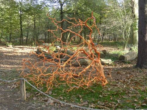 Tree sculpture.