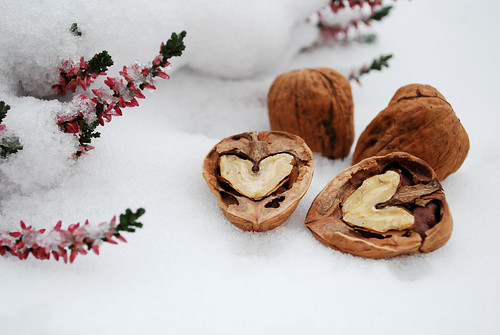 ✪ Walnuts in Snow ✪