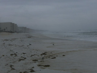gulf shores alabama 2008