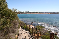 Get the essence of Sydney while passing through the Manly Scenic Walkway  - Things to do in Sydney