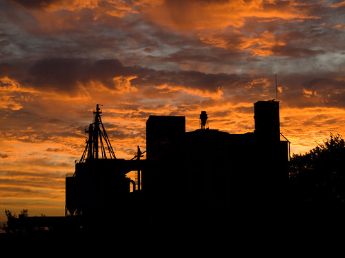 old morning sky orange building silhouette clouds sunrise downtown texas olympus greenville feedmill greenvilletexas e410 top20texas huntcountytx gtowneric