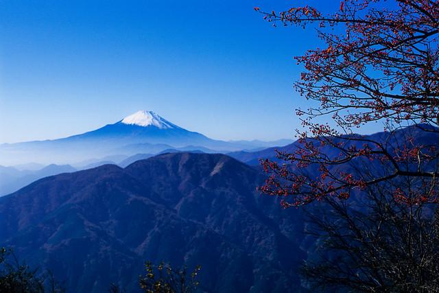 富士山,大山国定公園,日本 - 無料写真検索fotoq