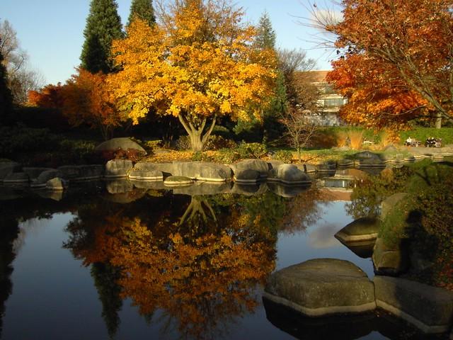 Planten un Blomen im Herbst - flickr: knehcsg