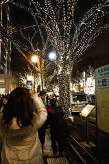 Omote-Sando Illumination 2010