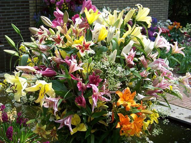 Beau bouquet multicolor de lys flickr photo sharing for Bouquet de lys
