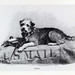Illustration of Owney on Mail Sack