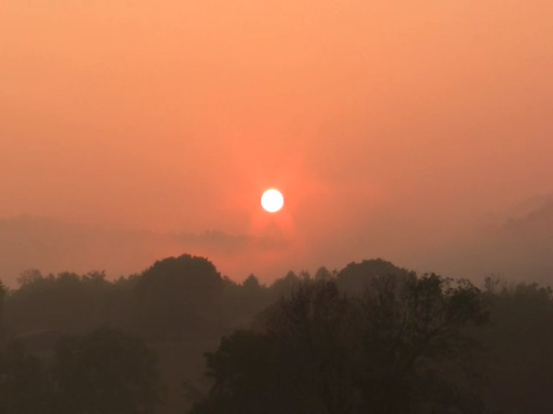 sunrise nc video smokies folkschool birdschirping