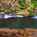 Swimming Hole, Portland Creek