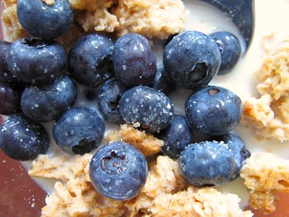 Baked Oatmeal with Blueberries