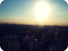 Hiedra al Sol by OEVB