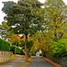Small photo of Chellow Lane, Allerton, Bradford