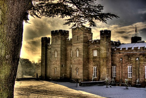 A winter walk at Scone Palace