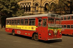 school bus(0.0), metropolitan area(1.0), vehicle(1.0), transport(1.0), mode of transport(1.0), public transport(1.0), double-decker bus(1.0), tour bus service(1.0), land vehicle(1.0), bus(1.0),