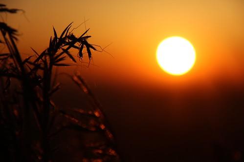 africa sunrise southafrica johannesburg dga espn joberg africansunrise dgaproductions kennymayneswiderworldofsports widerworldofsports