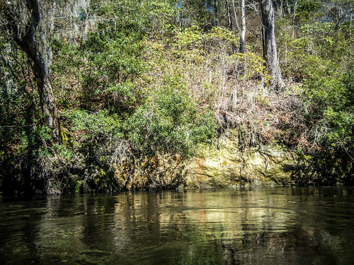 southcarolina kayaking paddling edistoriver lcu lowcountryunfiltered greenpondlanding whetstonelanding