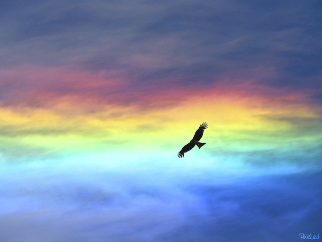 Iridescent Clouds 〜彩雲〜