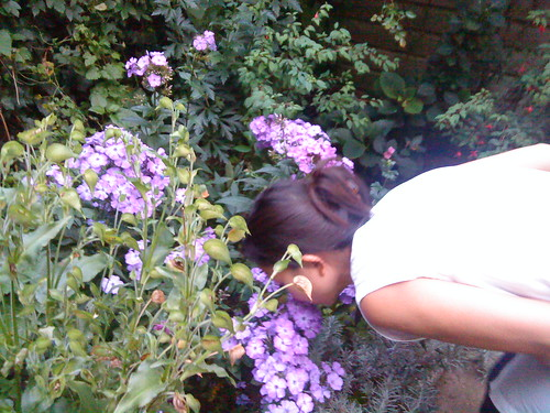 Anne stoops to smell the flowers in Amsterdam