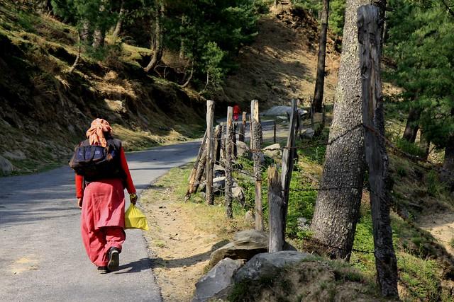 kharapathar himachal pradesh