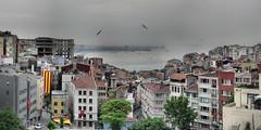 Istanbul - Bosphore - 20-05-2008 - 7h31