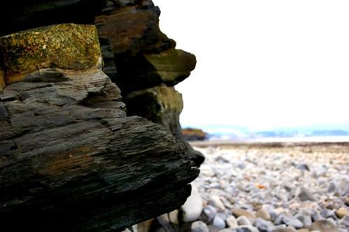 Kilve Beach 23-08-08 143