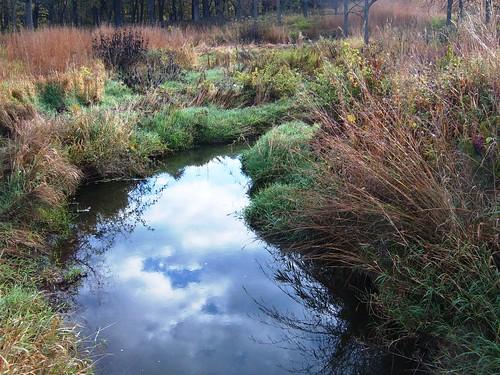 autumn sky fall grass reflections stream prairie mortonarboretum willowaybrook natureandnothingelse seasonaldifferences