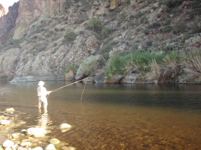 fishing the lower salt river flickr photo sharing