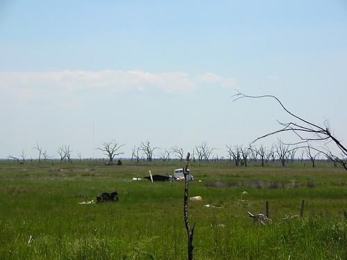 Marsh Debris