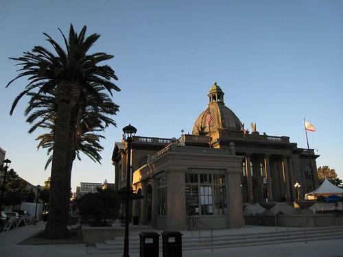 redwood city, king palms IMG_5864