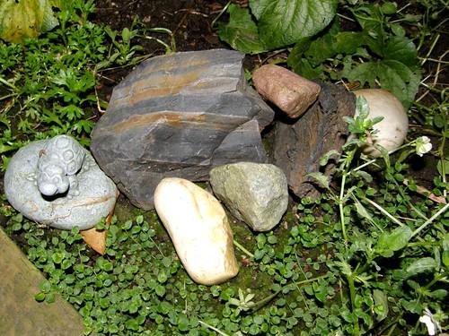 flipping rocks