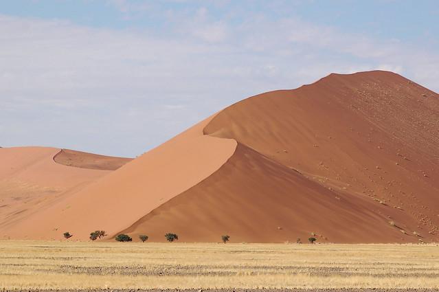 Sossusvlei, Parque nacional de Namib-Naukluft, Namibia.