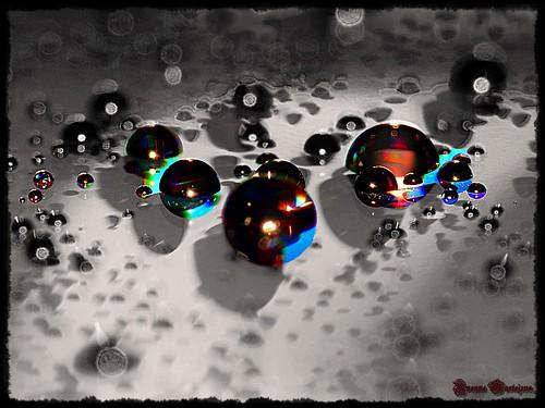 macro waterdrops colourartaward