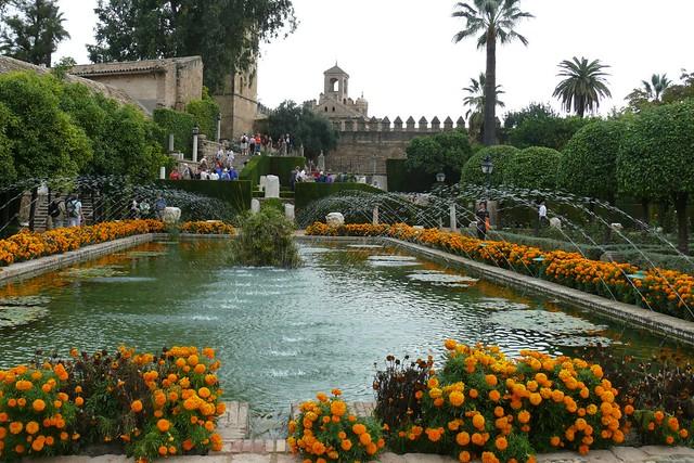 P1140592 Jardín botanico de Cordoba  Flickr - Photo Sharing!