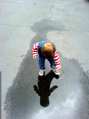 discovering his reflection in a puddle   DSC00833