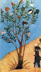 「シャー・ナーメ」写本ミニアチュア(15世紀頃)