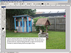 Tutorial - How to highlight items in your photos using the blur tool