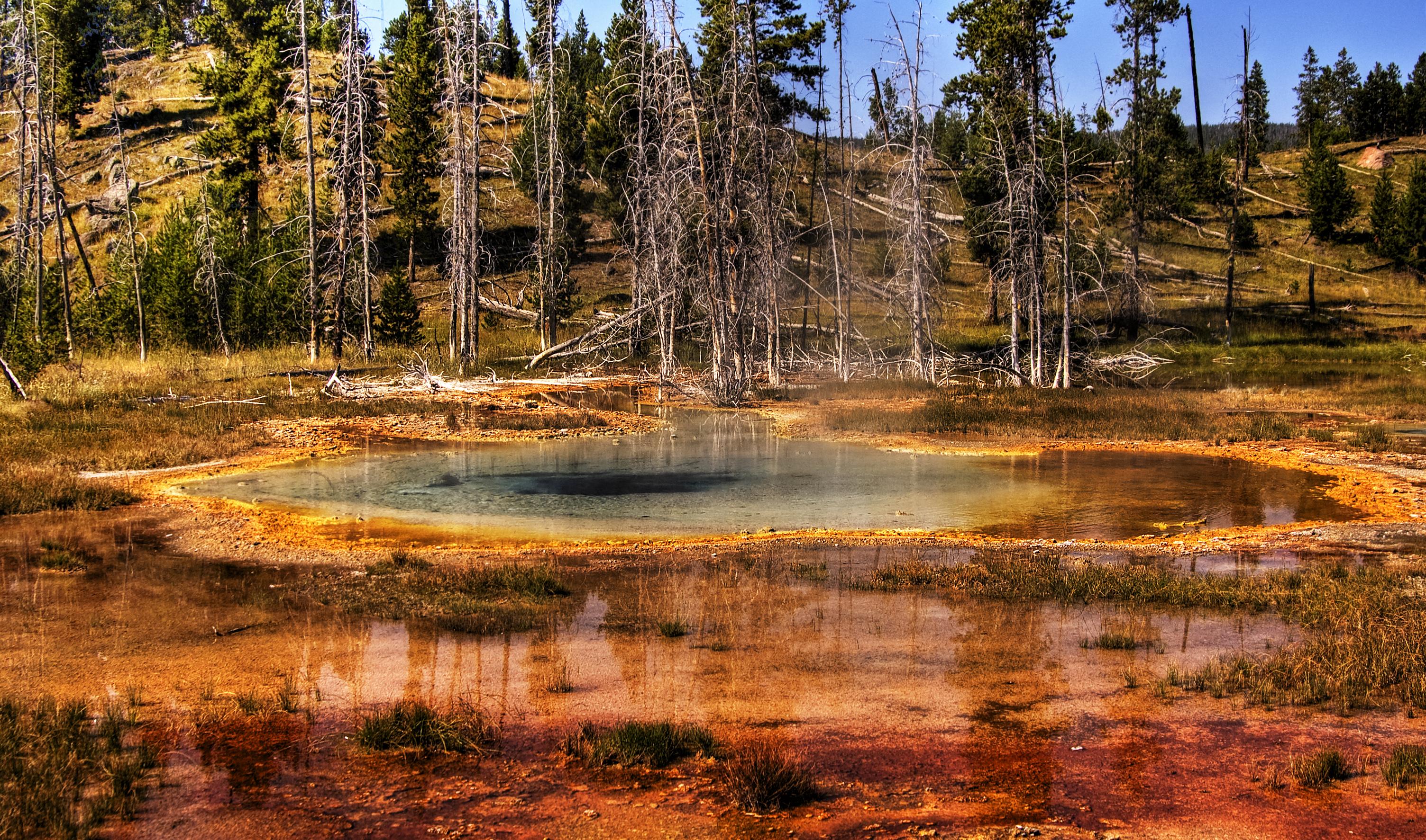 Yellowstone National Park By Emma Harris - Us national parks yellowstone
