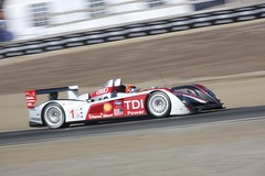 performance car(0.0), open-wheel car(0.0), formula racing(0.0), touring car(0.0), indycar series(0.0), formula one(0.0), race car(1.0), auto racing(1.0), automobile(1.0), racing(1.0), group c(1.0), vehicle(1.0), race(1.0), automotive design(1.0), motorsport(1.0), sports prototype(1.0), formula one car(1.0), race track(1.0), land vehicle(1.0), luxury vehicle(1.0), supercar(1.0), sports car(1.0),