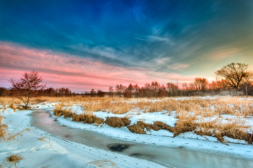 winter mist tree ice grass animal river landscape frozen stream tracks trails prairie hdr springbrook photomatix omot jonathanrobsonphotographycom viapixelpipe