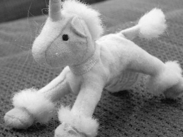 fluffy horses - photo #40