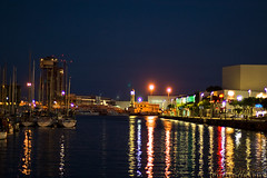 Port lights on the water