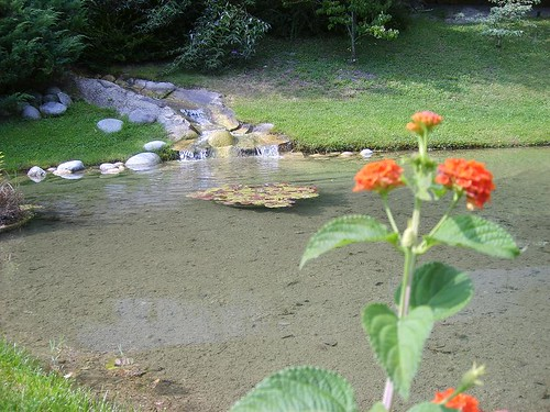 Trentino's Water