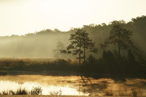 sunrise dawn virginia pocahontas jamestown naturesfinest isawyoufirst wowiekazowie theunforgettablepictures goldstaraward absolutelystunningscapes