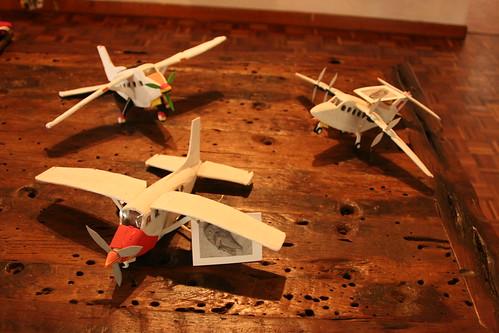 Medium Champali Planes FIT0026 (Individual)