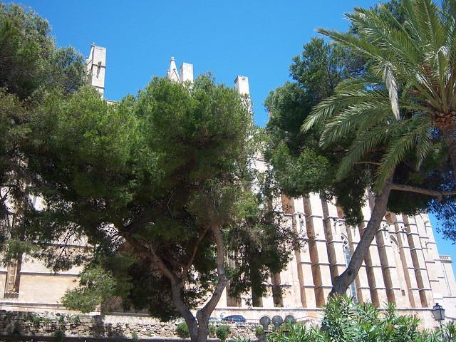Mallorca Hotel Plant Del Moro Tui