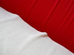 orange(0.0), duvet cover(0.0), furniture(0.0), bed sheet(0.0), pillow(0.0), pink(0.0), textile(1.0), red(1.0), maroon(1.0),