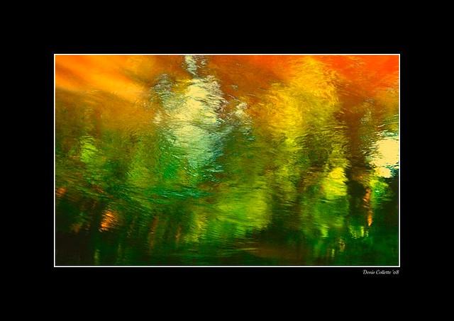 Endless Light in my wild river...!!! / Lumière sans fin dans ma rivière sauvage...!!!