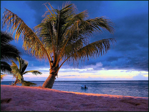 "travel sky beach colors sunrise alba blu palm mauritius palma colori spiaggia lemorne blusky lepavillon challengeyouwinner mauritiusisles nespyxel stefanoscarselli ""pleasedontusethisimageonwebsites blogsorothermediawithoutmyexplicitpermission©allrightsreserved"""