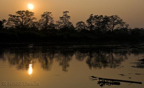 nepal nikkor chitwan d300 chitwannationalpark teeje