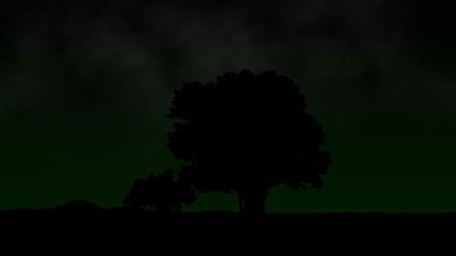 night dark silhouette green black stars sky beach trees plants clouds hamlinbeach hamlinbeachstatepark home newyork redo nature landscape ny g9 powershotg9 genine